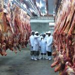 Beef prices fall slightly as animal supply improves